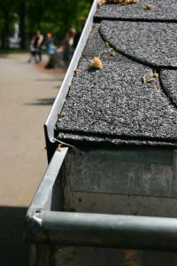 Bild Dachrinne und Zinkwindfeder mit Schindeln